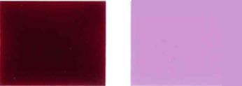 Pigment-gwałtowny-19-kolorowy